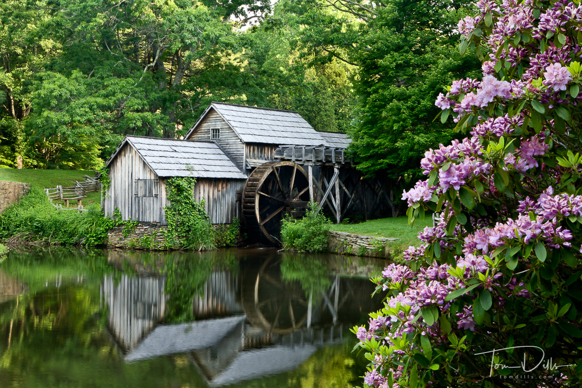 Mabry Mill, Spring, Blue Ridge Parway, VA