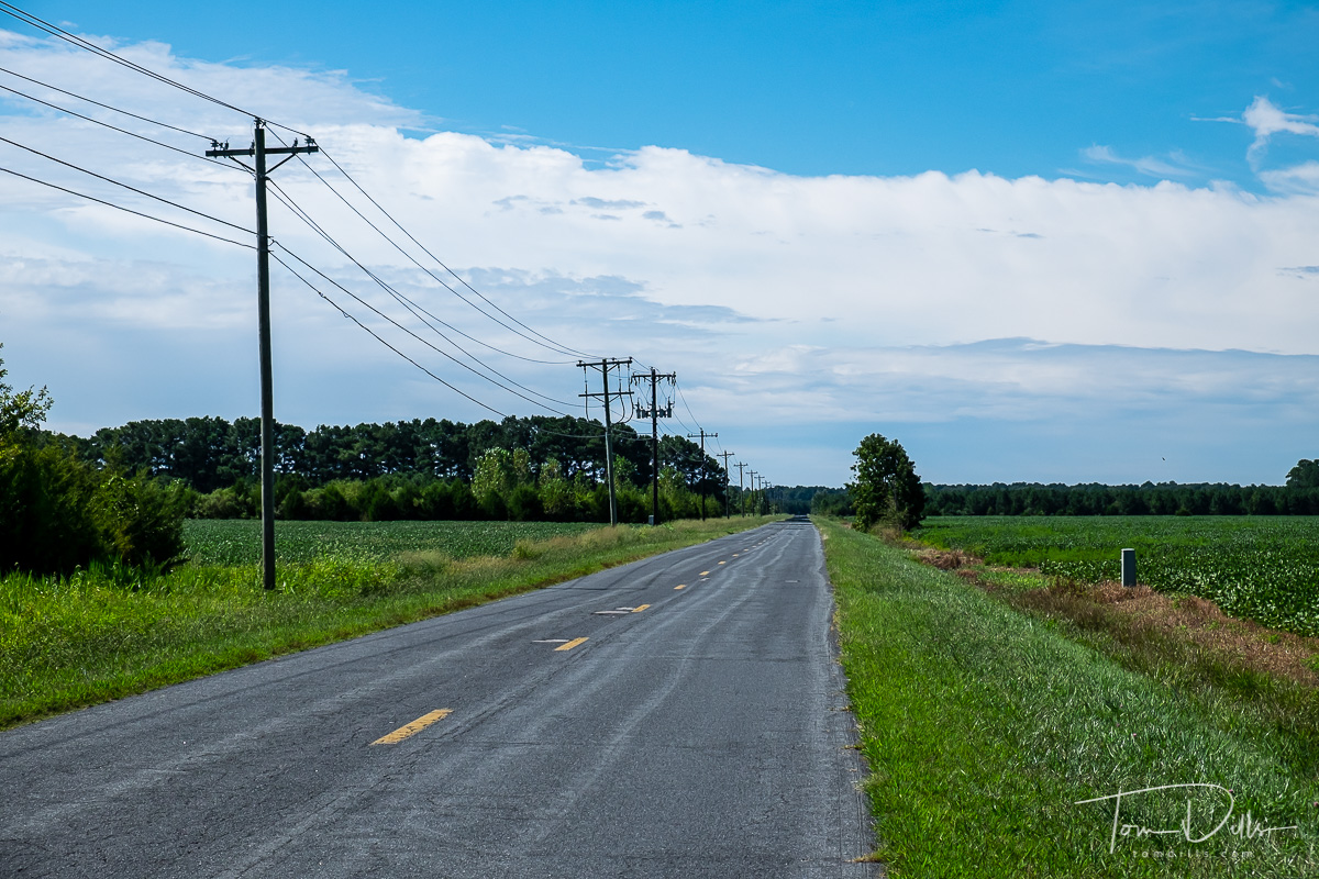 Rural Maryland countryside enroute to Blackwater National Wildlife Refuge, Maryland