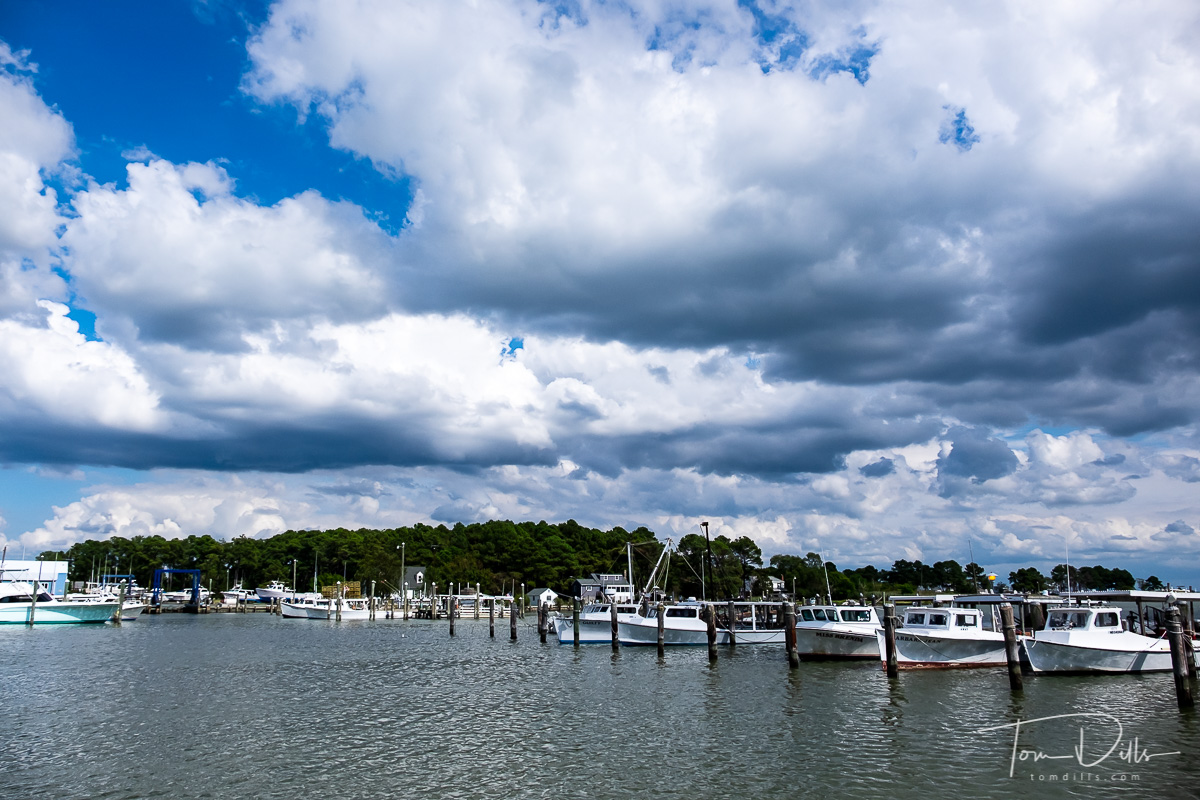 Boats on Back Creek as viewed from Hoopers Island Road in Hoopers Island, Maryland