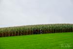 Field of Dreams Movie Site, Dyersville, Iowa