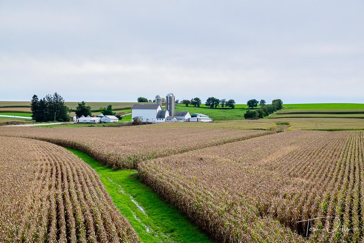 Dairy Farm along SR 81 near Beloit, Wisconsin
