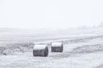 Snowy roadside scene along SR 79 near Reeder, South Dakota