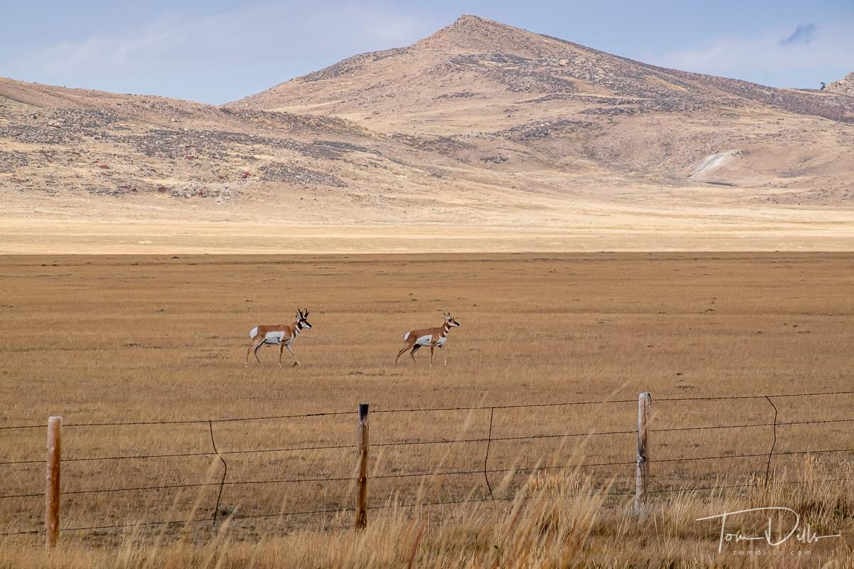 US-487 south of Casper, Wyoming