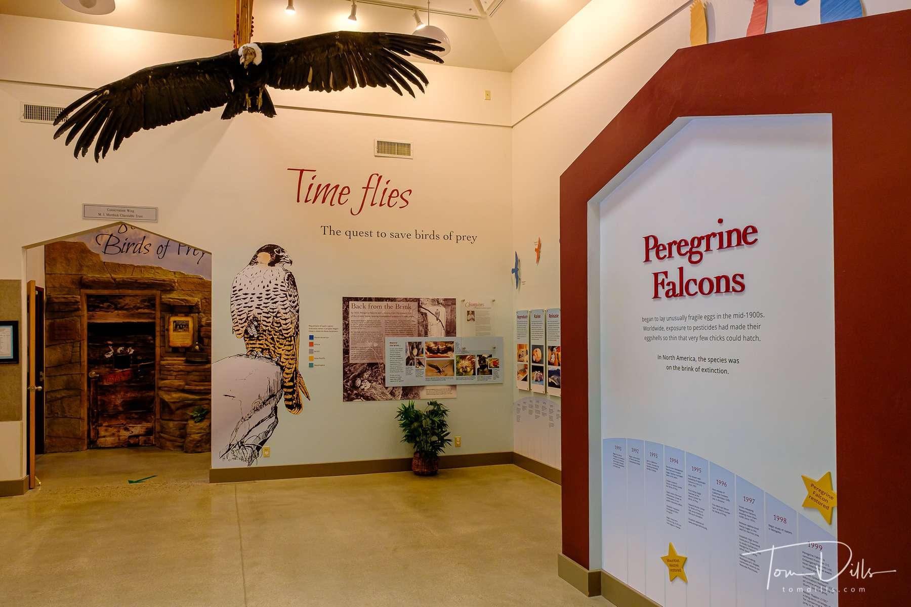 World Center for Birds of Prey in Boise, Idaho