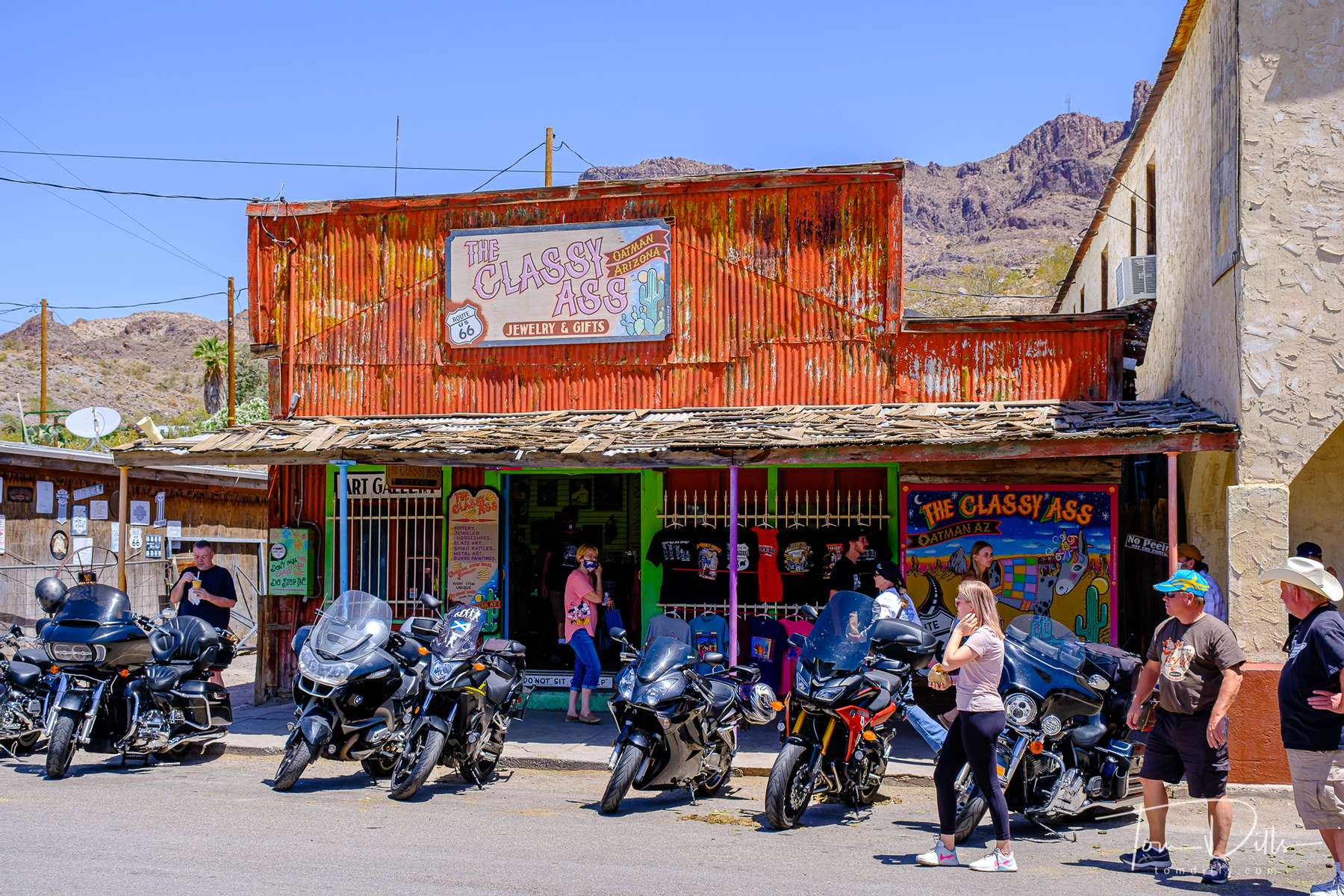 The town of Oatman, Arizona is famous for its wild burros (and tourists) roaming the streets.  A Route 66 attraction.