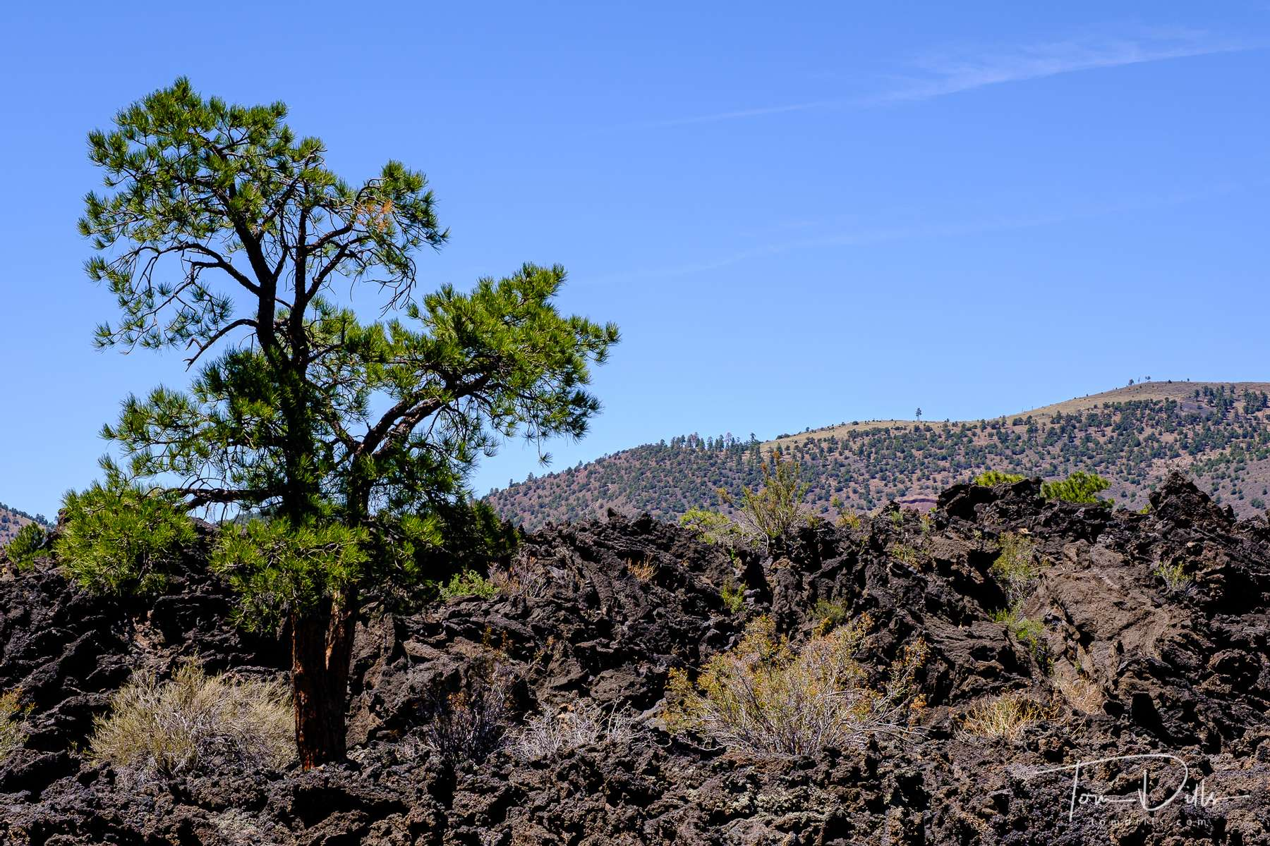 Sunset Crater Volcano National Monument in Arizona