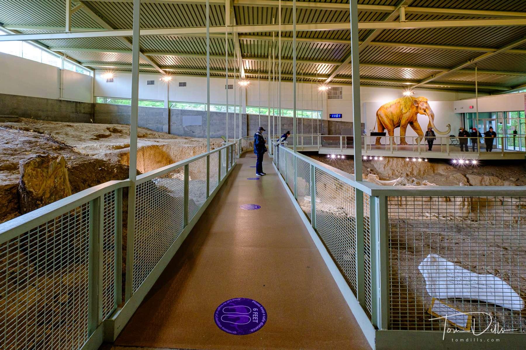 Waco Mammoth National Monument in Waco, Texas