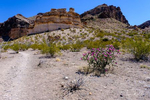 Views along the trail to Lower Burro Mesa Pouroff at Big Bend National Park in Texas