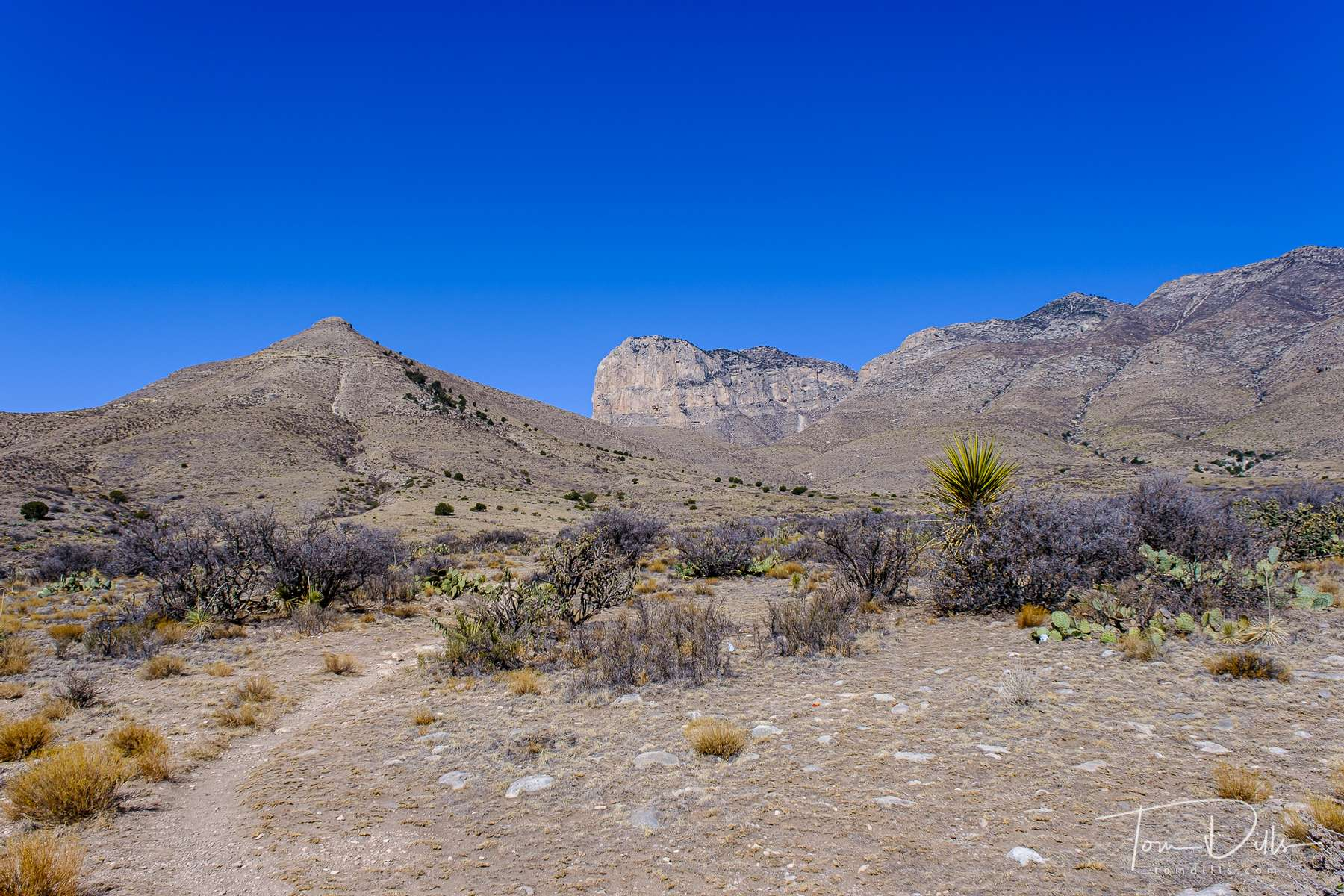 Views of Guadalupe Mountain, the highest point in Texas.  From US 62 near Salt Flat, Texas