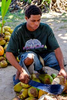 Sampling fresh coconut and coconut water during our Chef's Market Tour shore excursion in Nassau, Bahamas