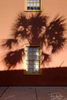 Palm shadows, St. Augustine Florida