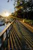 Shelter Cove Marina, Hilton Head Island, South Carolina
