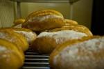 Fresh baked bread at Bracken Mountain Bakery