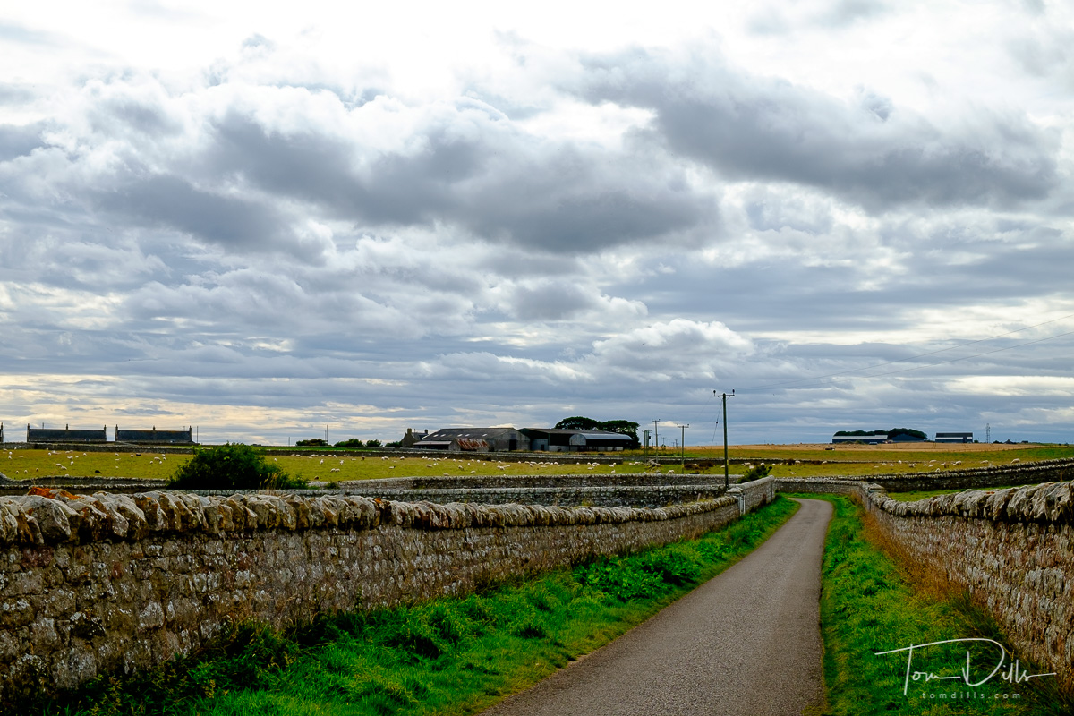 Road on the Dornock Firth near Wilkhaven, Scotland