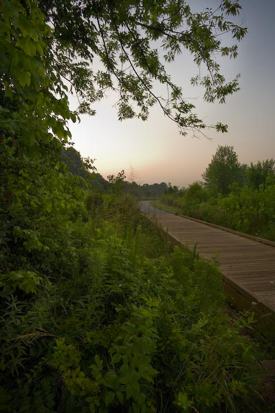 Early summer, Torrence Creek Greenway, Huntersville, North Carolina