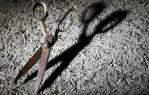 scissors_01_019