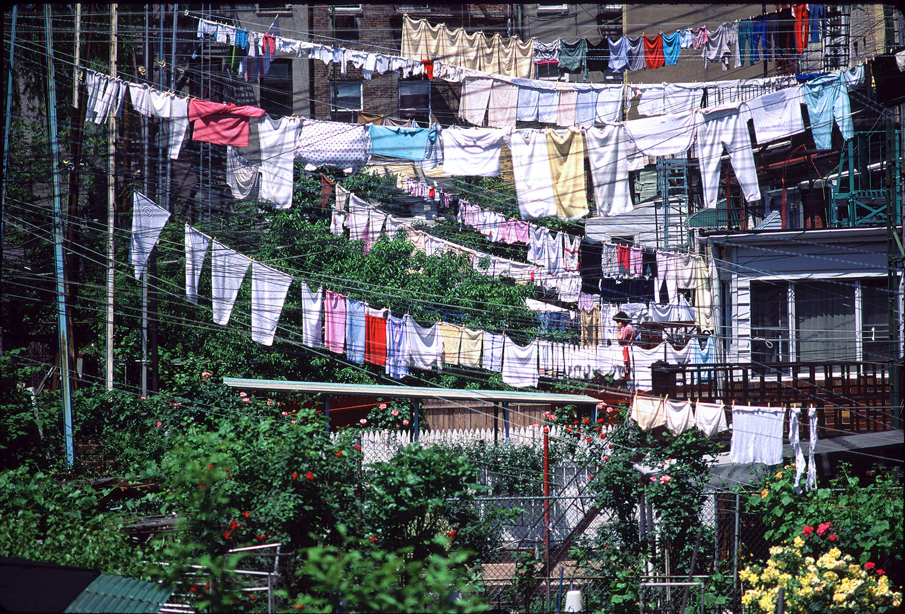 clothes-lines-full-in-Brooklyn_Nik_res