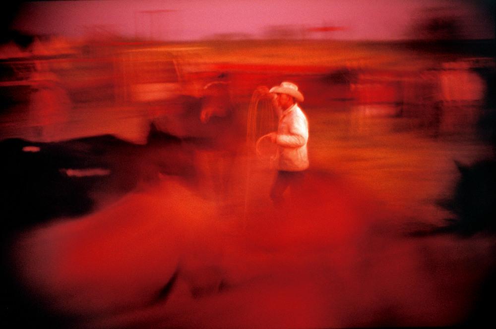 MISC_Cowboy_2_srgb_WEB_new