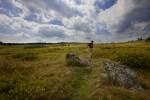 BR_-snp-big-meadows--08
