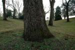 BR_11jan-baboursville-montp-01