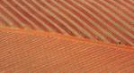 intro20mar06_aerials_Kluge_Vineyard-0323__1024px