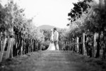 wedding186