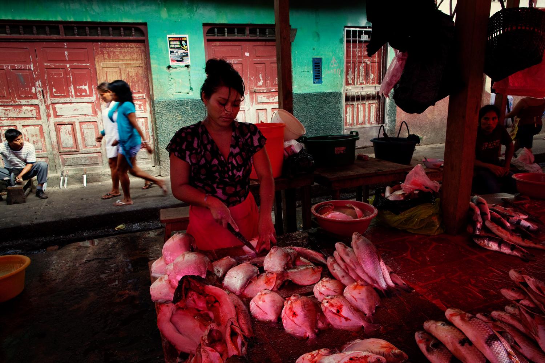 130916_Ayahuasca_Peru__3227