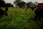 20110527__AARP_Kansas__1018