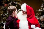 20141206_Kimmel_Holiday_6516
