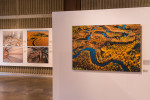 __Garth_Lenz-exhibit-1499