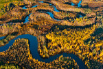 "Located just 70 miles downstream from the Alberta Tar Sands, the Athabasca Delta is the world's largest freshwater delta. It lies at the convergence of North Americas four major flyways and is a critical stopover for migrating waterfowl and considered one of the most globally significant wetlands.20""x30""          Edition of 10          $150030""x45""          Edition of 10          $3200*40""x60""         Edition of 5            $6000*Exhibition print:40""x60"" archival pigment print on Hahnemuhle bamboo, bonded to aluminum."