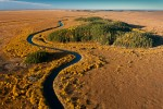A tributary of the Slave River winds its way through the vast Athabasca Delta, the world's largest freshwater delta. A