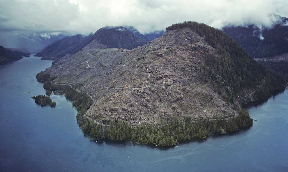 Another early image - 1990 - and first attempts at aerials.In the early 1990's, as an attempt to counter growing international criticism of logging practices in B.C., the government brought in logging guidelines. Seen hear is a {quote}Scenic Fringe{quote} as part of the Government's {quote}Visual Quality Objectives.{quote}