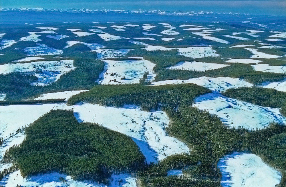 A common feature of the boreal is the site of patchwork logging. Often used as a way to get around clearcut size restrictions, it merely spreads the damage and  fragmentation over a larger area.
