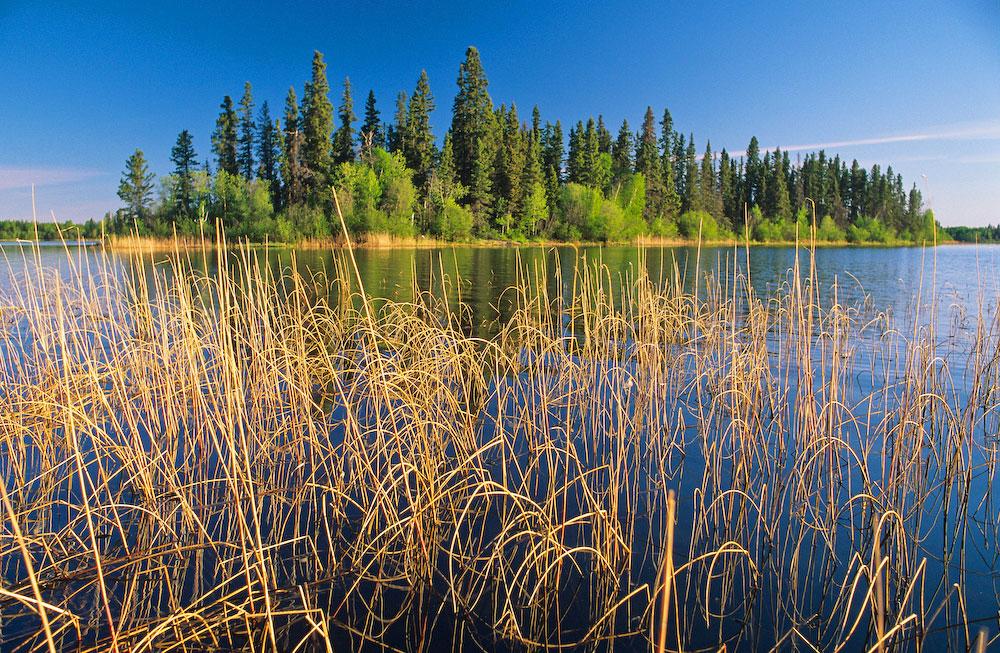 Big Bear Island Lake.Churchill River.Saskatchewan,Canada