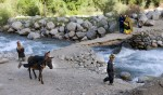 Kalash children play on a donkey near the glacial river that runs through the Bumburet Valley and their village of Brun. The water is deviated into irrigation canals that create ideal conditions for agricultural, despite a typically dry climate.