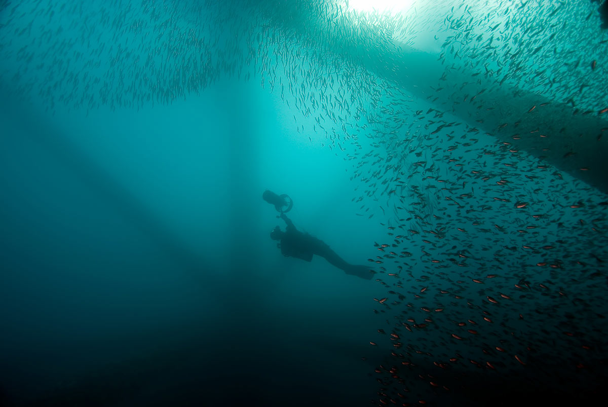 More play time at the end of the dive, as Claudette zooms through the cloud of Bait Fish on the rigs.