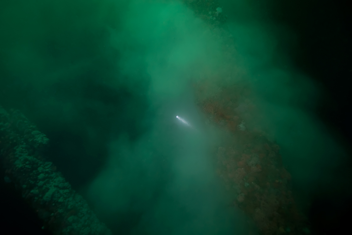You can see the powerful dive light just penetrating the fog.