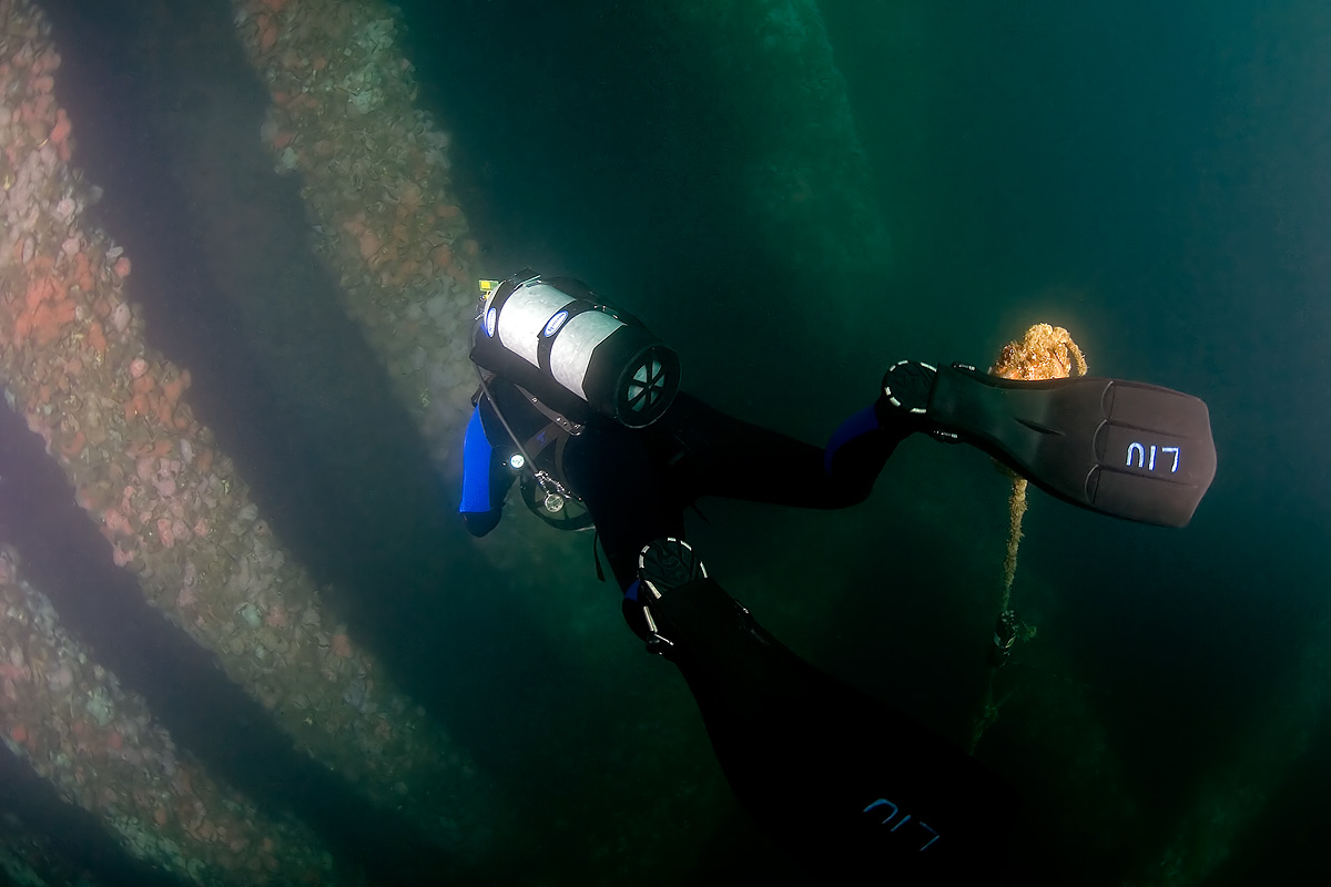 Diver Ken L. making his descent into the rig pilings.