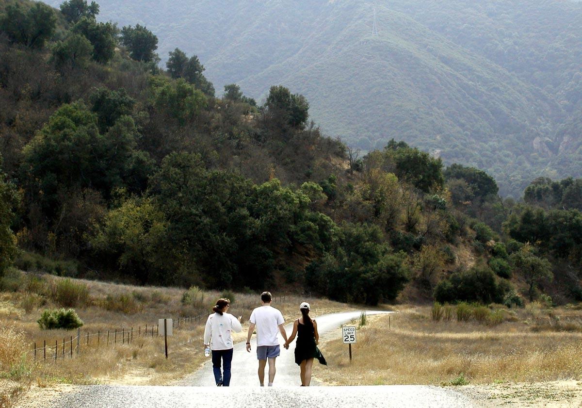 Three friends, walking under the speed limit.