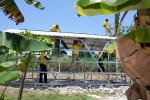 Abramson_CHF_Haiti_06