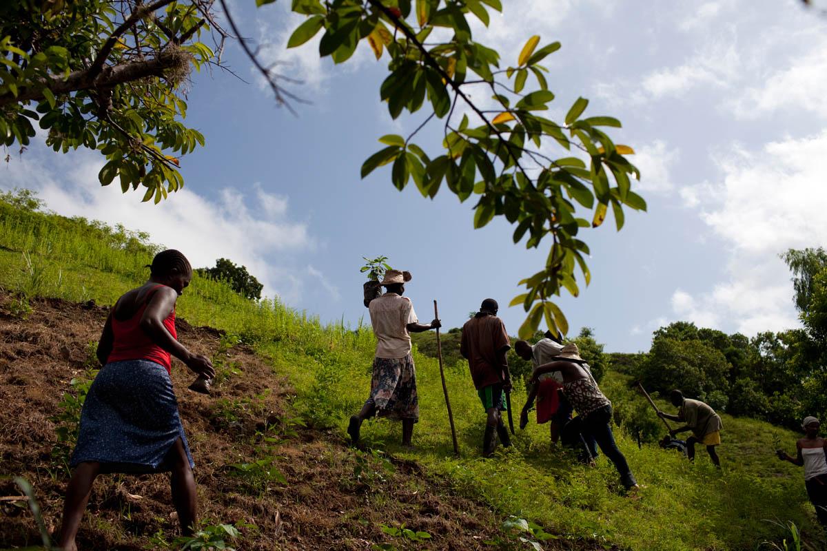 Abramson_Legatum_Haiti_07
