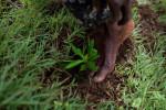 Abramson_Legatum_Haiti_09