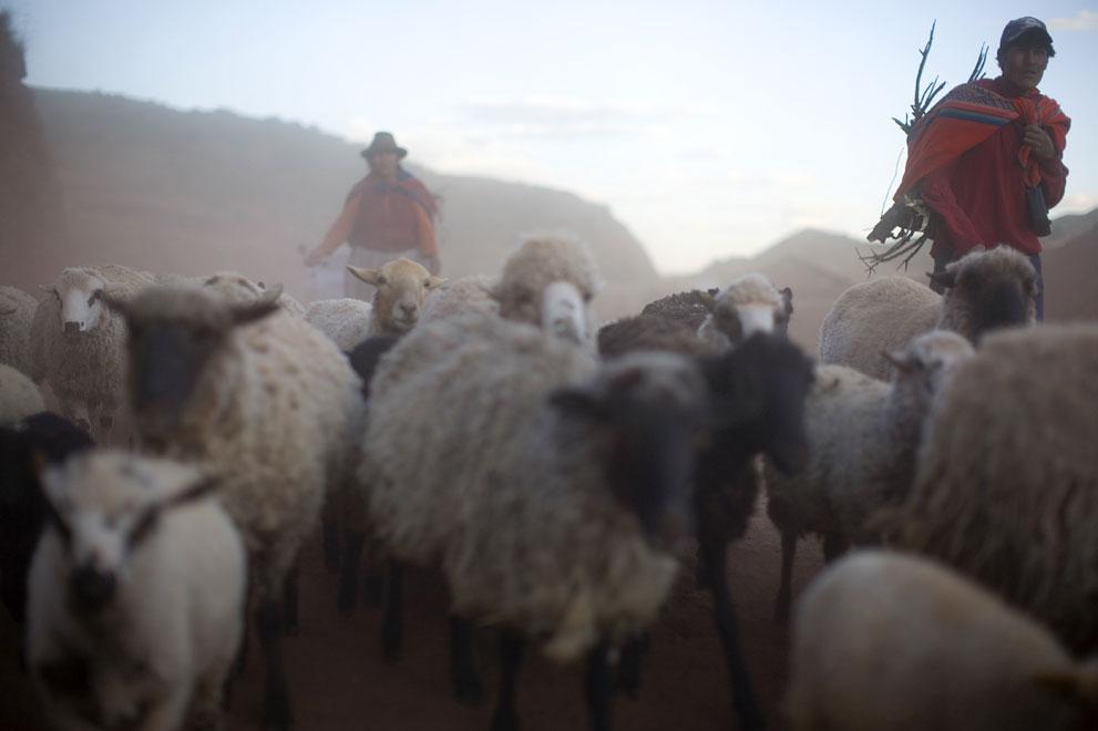 oxfam_cuzco_04