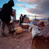 Isidro Alcudia chops firewood while his son, Ricardo, looks on, outside of their trailer.