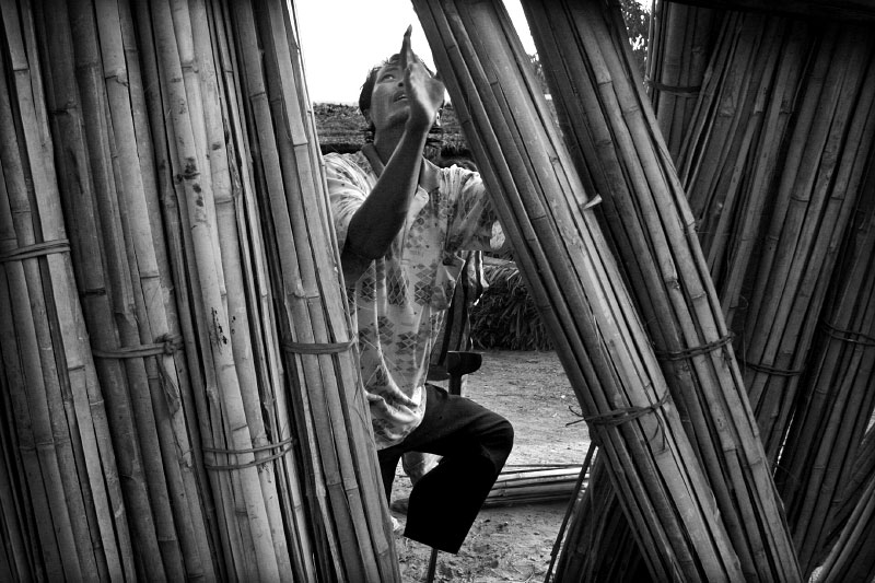 Jen Kina inspects bamboo to repair the hut he lives in with his wife and five children. On a rare day when there was money left after buying food for his family he purchased much needed materials for fixing holes in the side of his home. (© Mike Brown)
