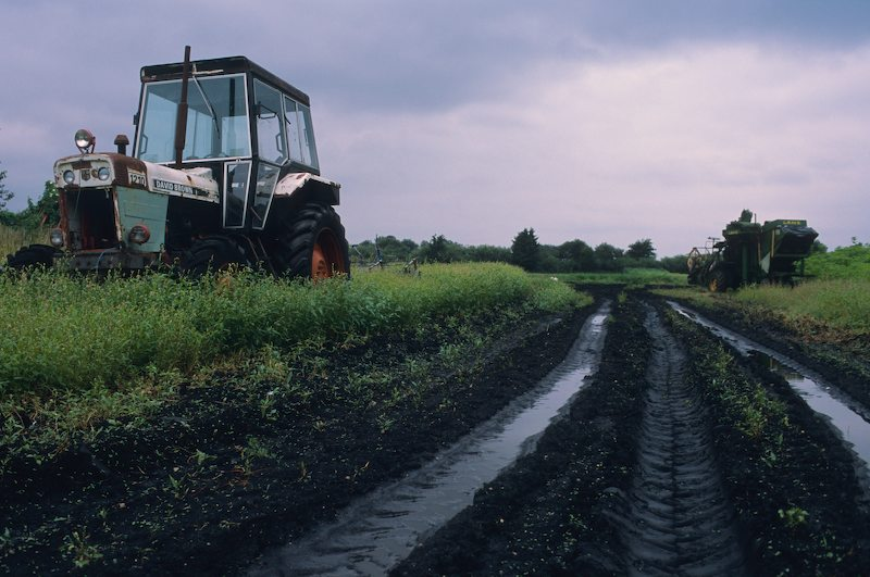 Farm-Scene_-Norfolk_-2006