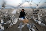 Linda Serafin feeds seagulls at Point Pleasant Beach in New Jersey on March 15, 2008. She feeds the birds almost every day in the winter. She recognizes several of the birds and has given names to them.