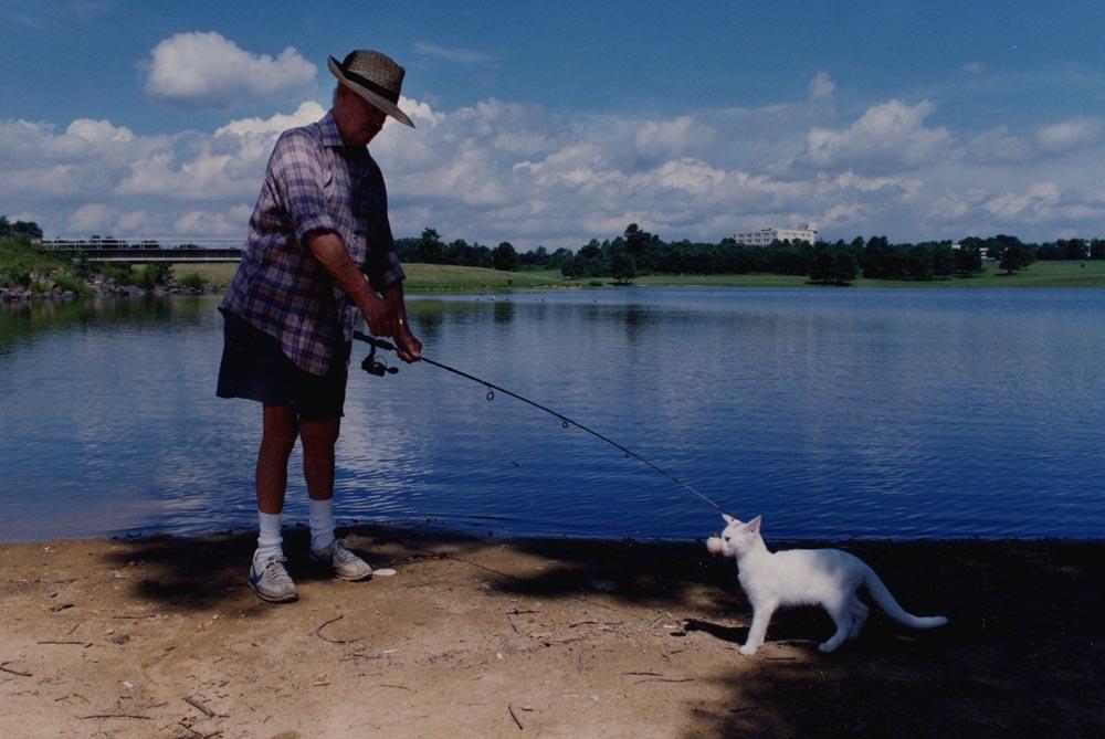 Cat Fish, Langhorne, PA