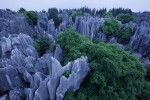 The Stone ForestNear Xian, China